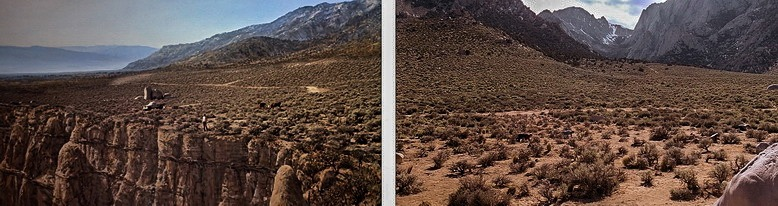 Грабоиды в пустоши пустыни
