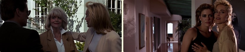 Sharon stone in Basic instinct character did not kill anybody