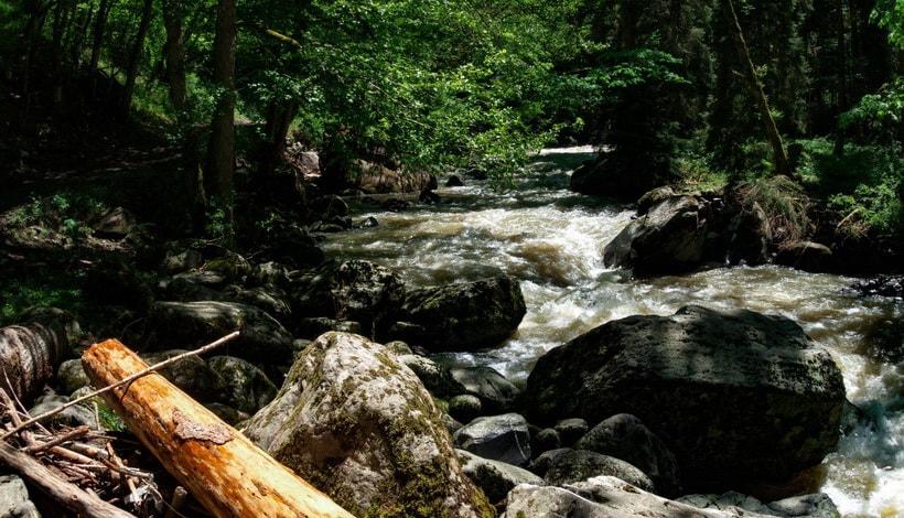 Парк Боржоми - стремительный поток реки