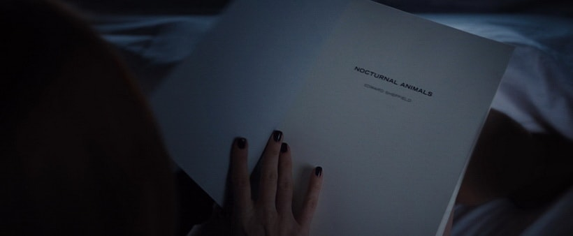Книга внутри книги внутри фильма Тони и Сьюзен