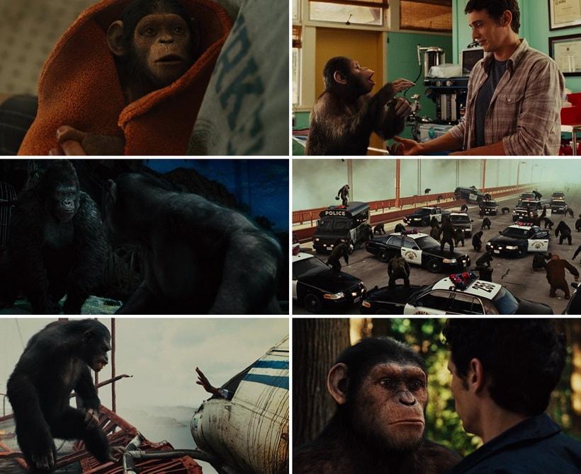 Восстание планеты обезьян 2011