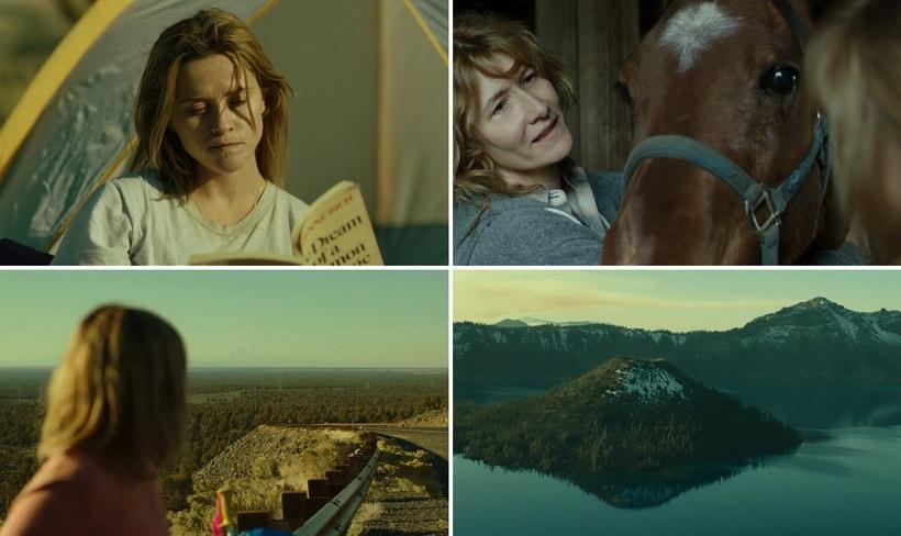 Фильм Дикая (Wild, 2014) с Риз Уизерспун