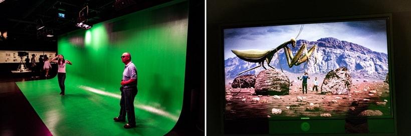 Изображение. Зеленый экран