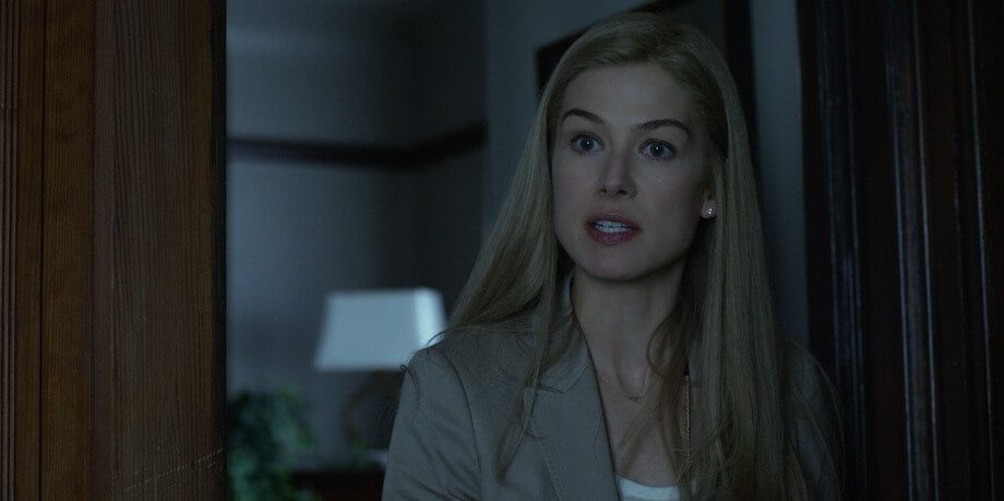 The use of the color palleter in the Gone girl movie